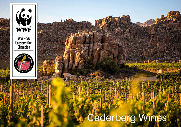 Cederberg Private Cellar