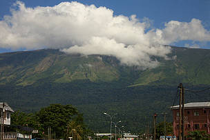 partial view of Mt Cameroon from molyko  © Janet Mukoko/WWF