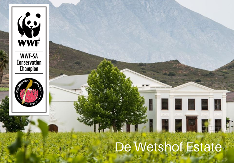 De Wetshof Wine Estate
