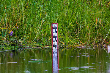Water Gauge in Kafue River