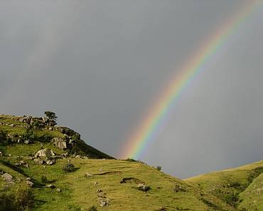 Rainbow in the grasslands