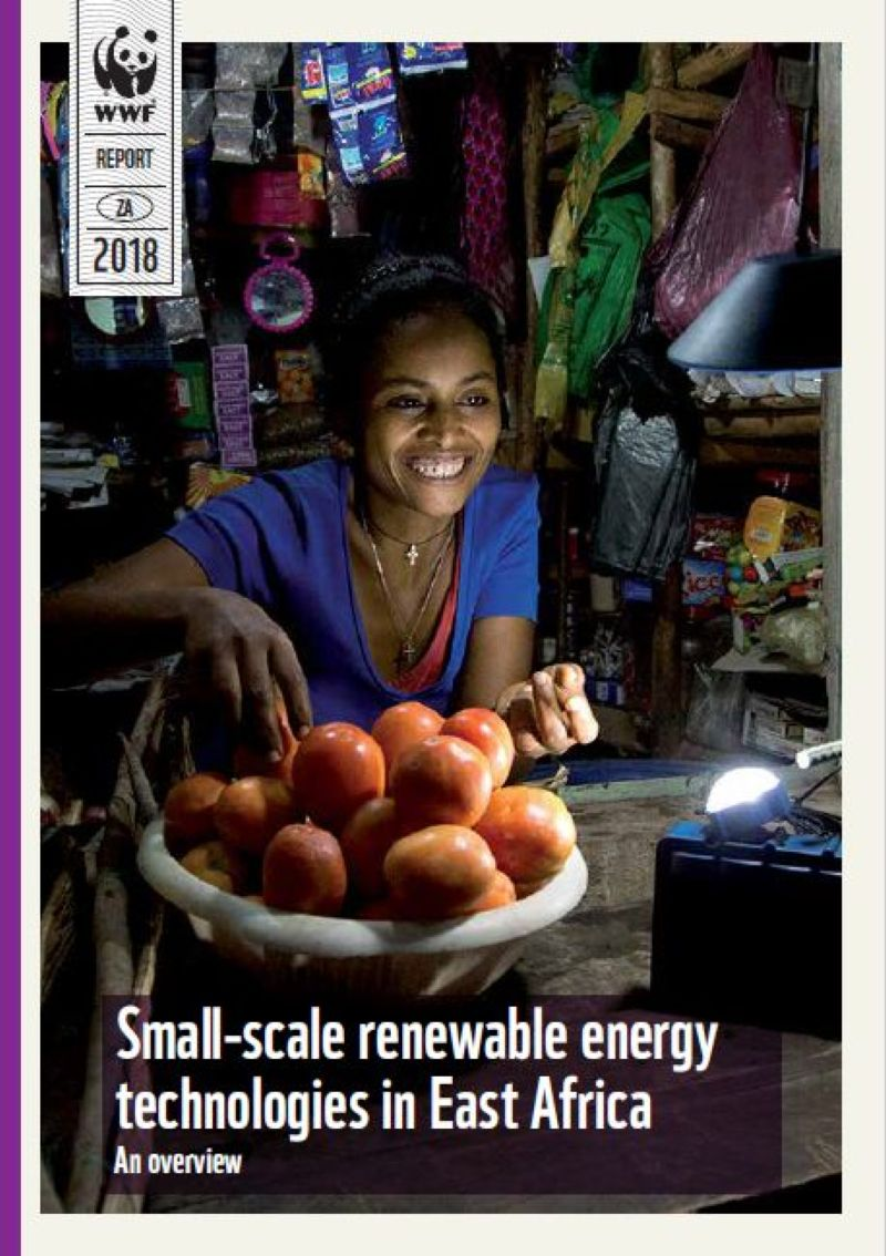 Small-scale renewable energy technologies in East Africa