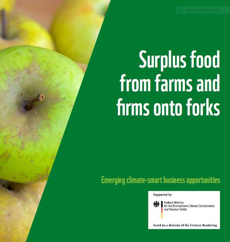 Surplus food from farms and firms onto forks publication cover